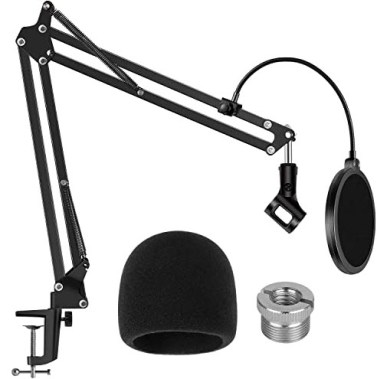 Microphone Stand and filter