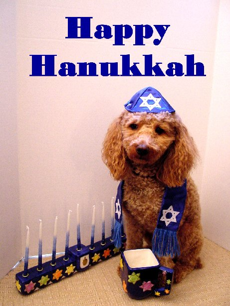 HanukkahAnd All That Jazz The Music Court