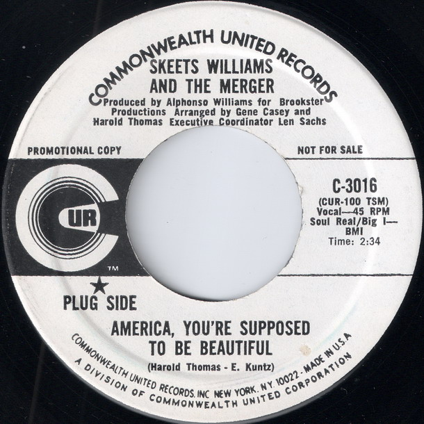 Skeets Williams And The Merger - America, You're Supposed To Be Beautiful, Commonwealth United 45