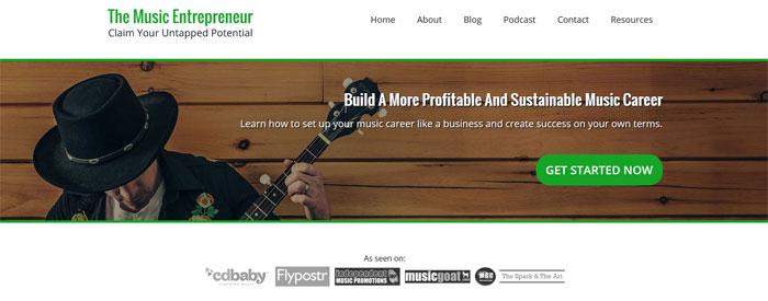 The Music Entrepreneur
