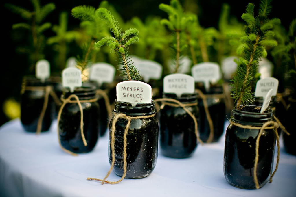 WedWed: Eco Freindly Wedding Favors