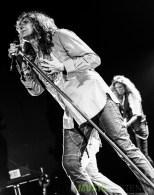 Whitesnake (737 of 38)