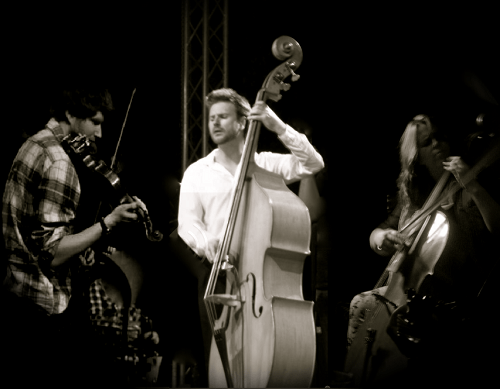 Off Beat Jazz String Trio & Quartet