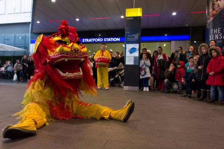 Chinese-Lion-Dance-Seated2
