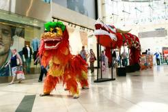 Lion-in-front-dragon