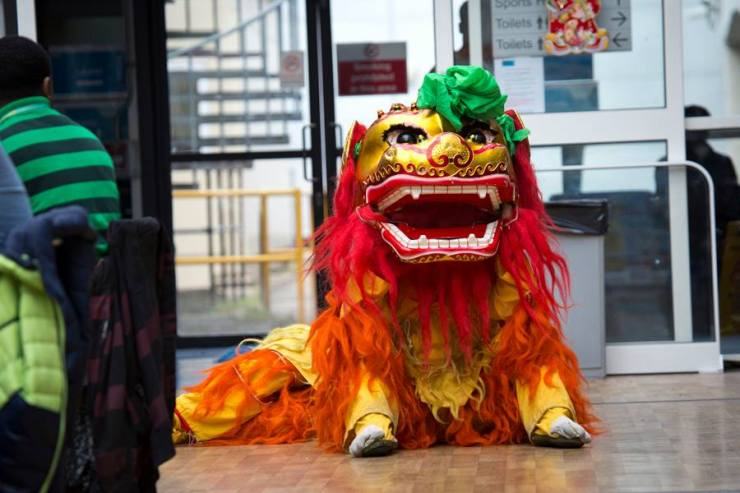 Chinese-Lion-Resting