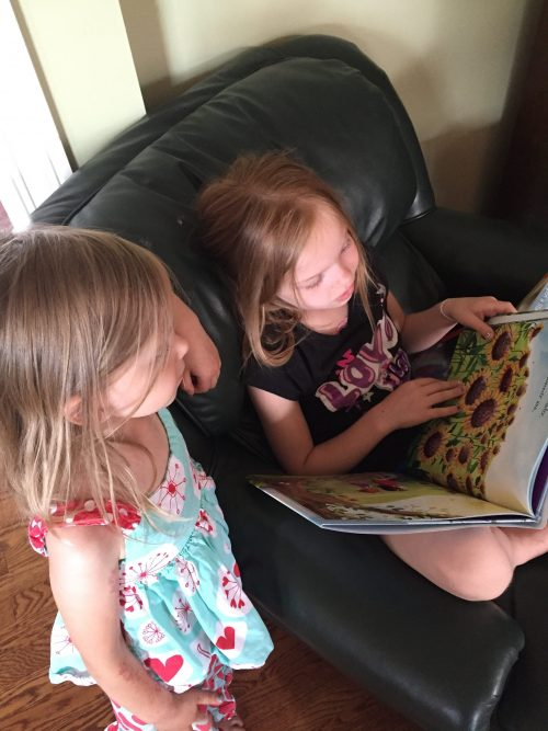 All Things Bright and Beautiful picture book review