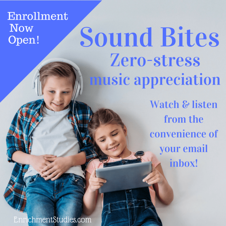 Sound Bites music appreciation in your email inbox! Get an email each day of a video to watch and add music appreciation to your homeschool and classroom! ~Music in Our Homeschool