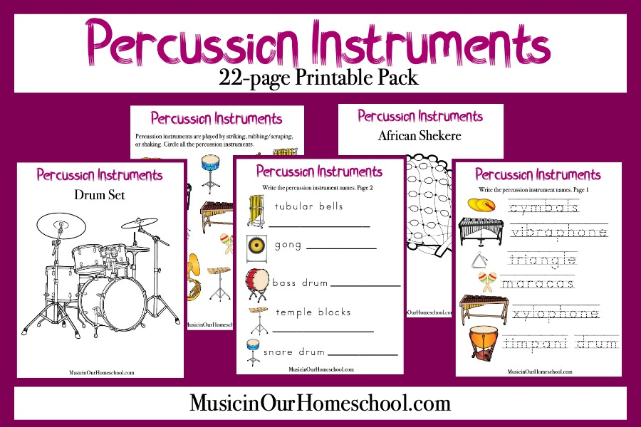 Percussion Instruments pin