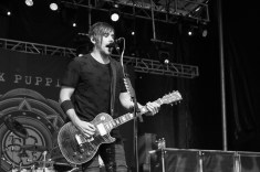 sick-puppies-7