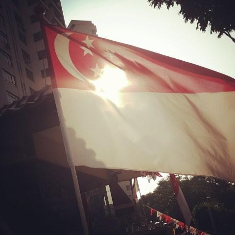 Singapore Flag SG50
