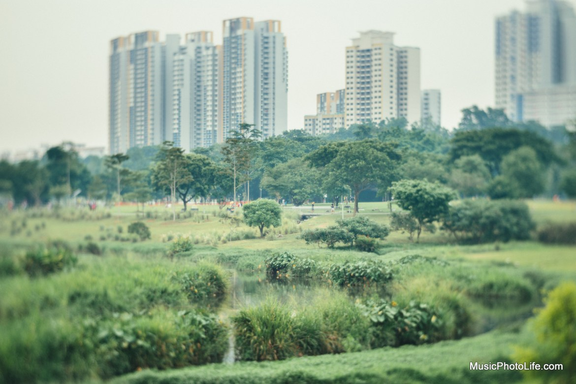 Bishan Park Singapore shot with Lomography Petzval 58