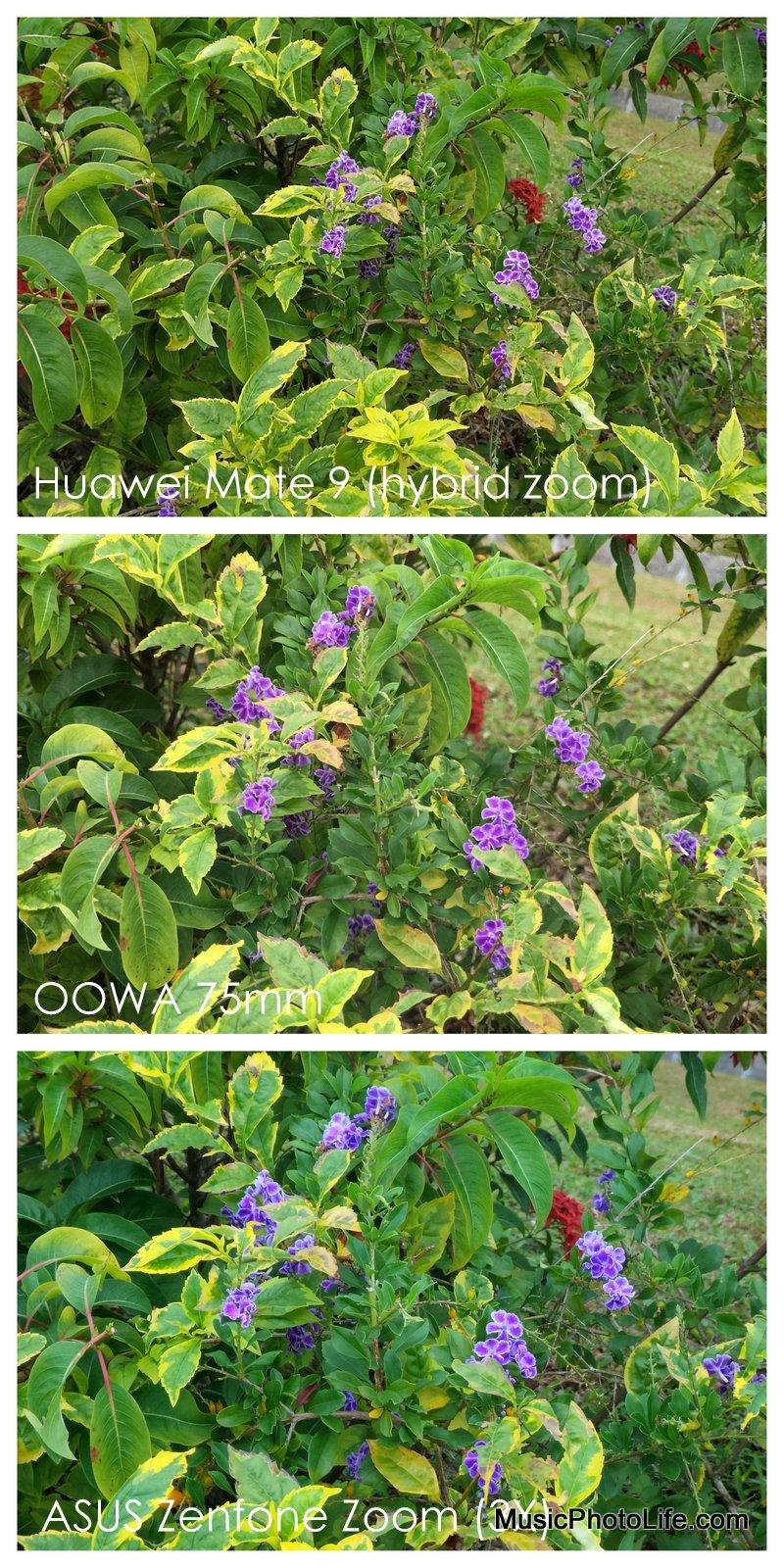 OOWA 75mm, Huawei Mate9, ASUS Zenfone Zoom comparison