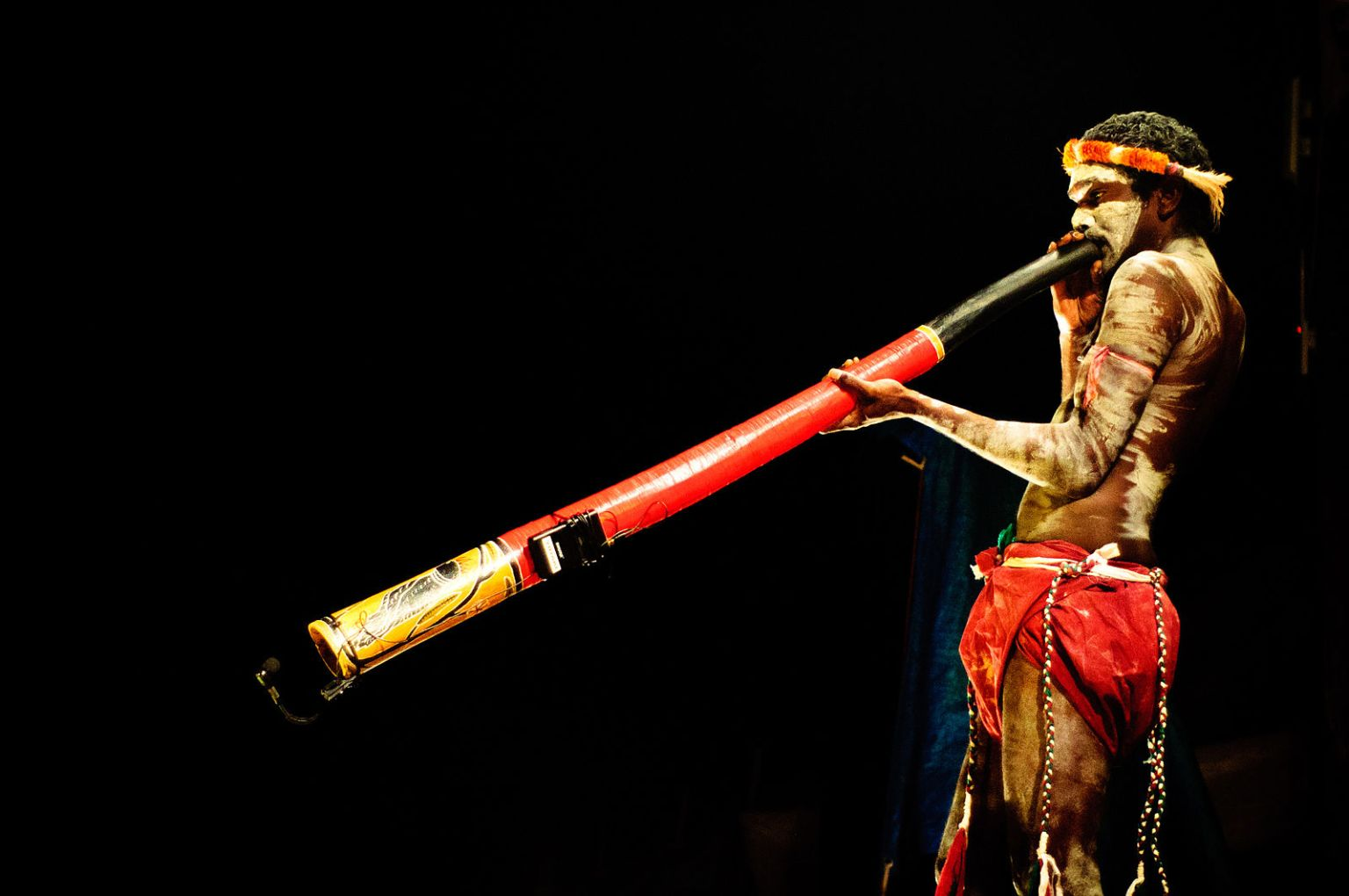 Where to buy didgeridoo for sale