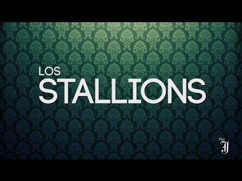 LIVE SESSIONS: LOS STALLIONS (entrevista)