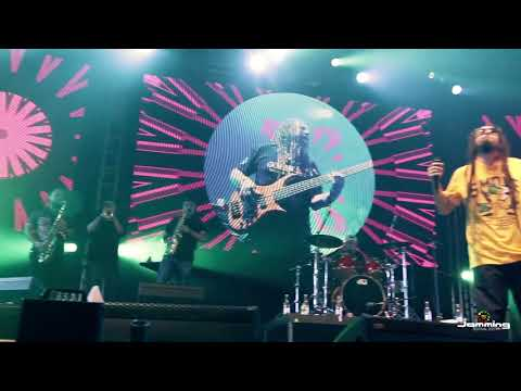 Gondwana Dulce Amor En Vivo JMMNGFSTVL HD
