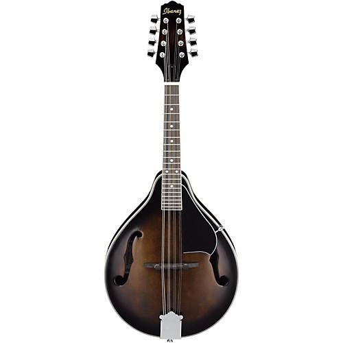 best beginner mandolins