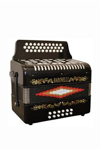best diatonic accordion for beginners