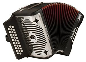 best beginner accordions