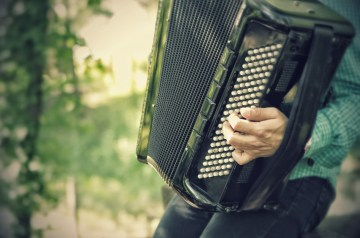 best beginner accordion reviews