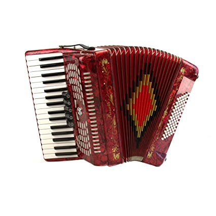 Best Piano Accordions For Beginners