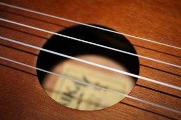 Best Acoustic-Electric Ukuleles