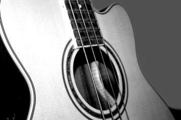Best Acoustic Bass Guitars