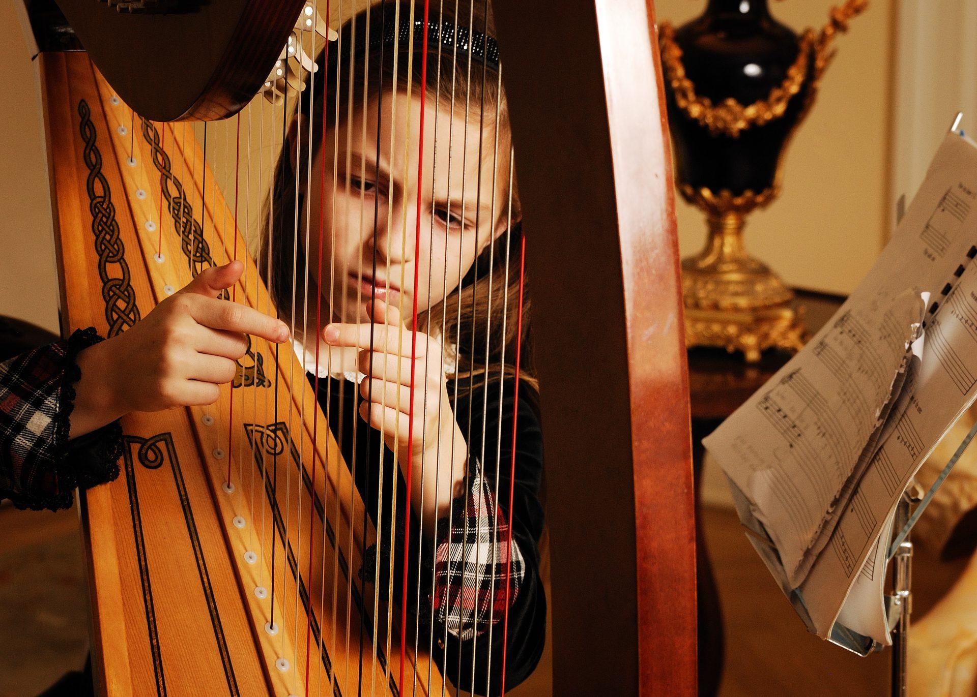 Best Harps For Beginners