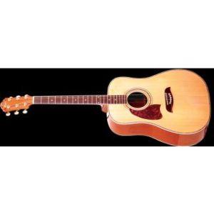 Washburn OG2 NLH Акустичесая гитара