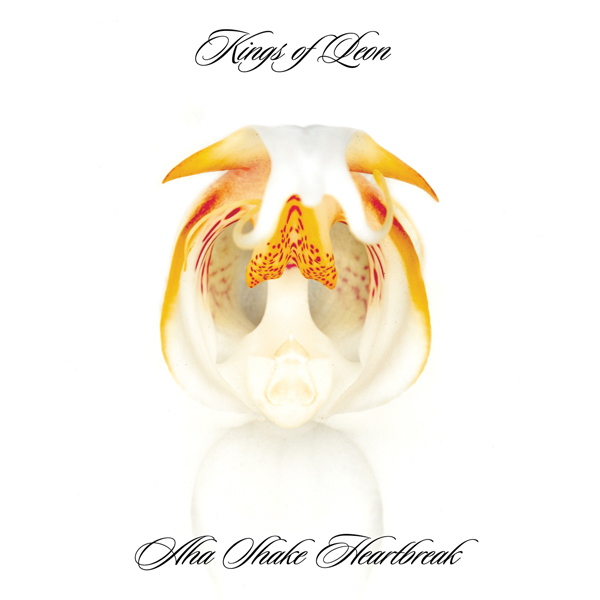kings-of-leon-aha-shake-heartbreak-album-cover