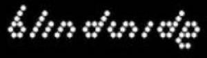 Blindside Logo white on black