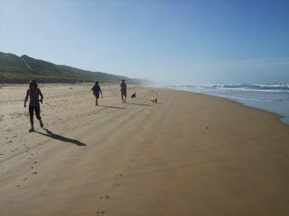 v-bay-morning-beach