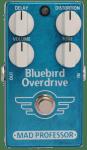Bluebird Small