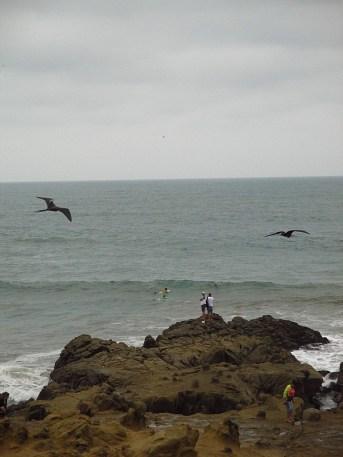 Dort hinten in den Wellen kann man ein paar der Surfer erkennen, man versucht, eine Welle einzufangen und dann rechts an den Felsen vorbei zu surfen, sieht gefährlich aus, ist es auch, wenn man sich blöde anstellt, aber deswegen macht man das ja nicht…