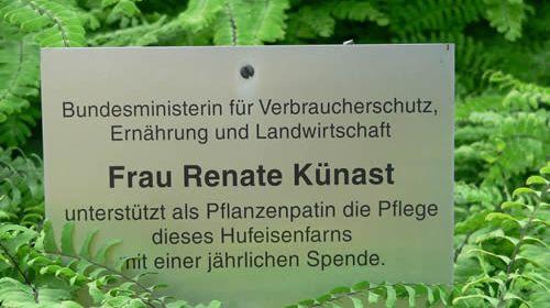 Unterstützung für die Pflanzen. Foto: Hufner