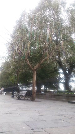 A tree with beads in Jackson Square