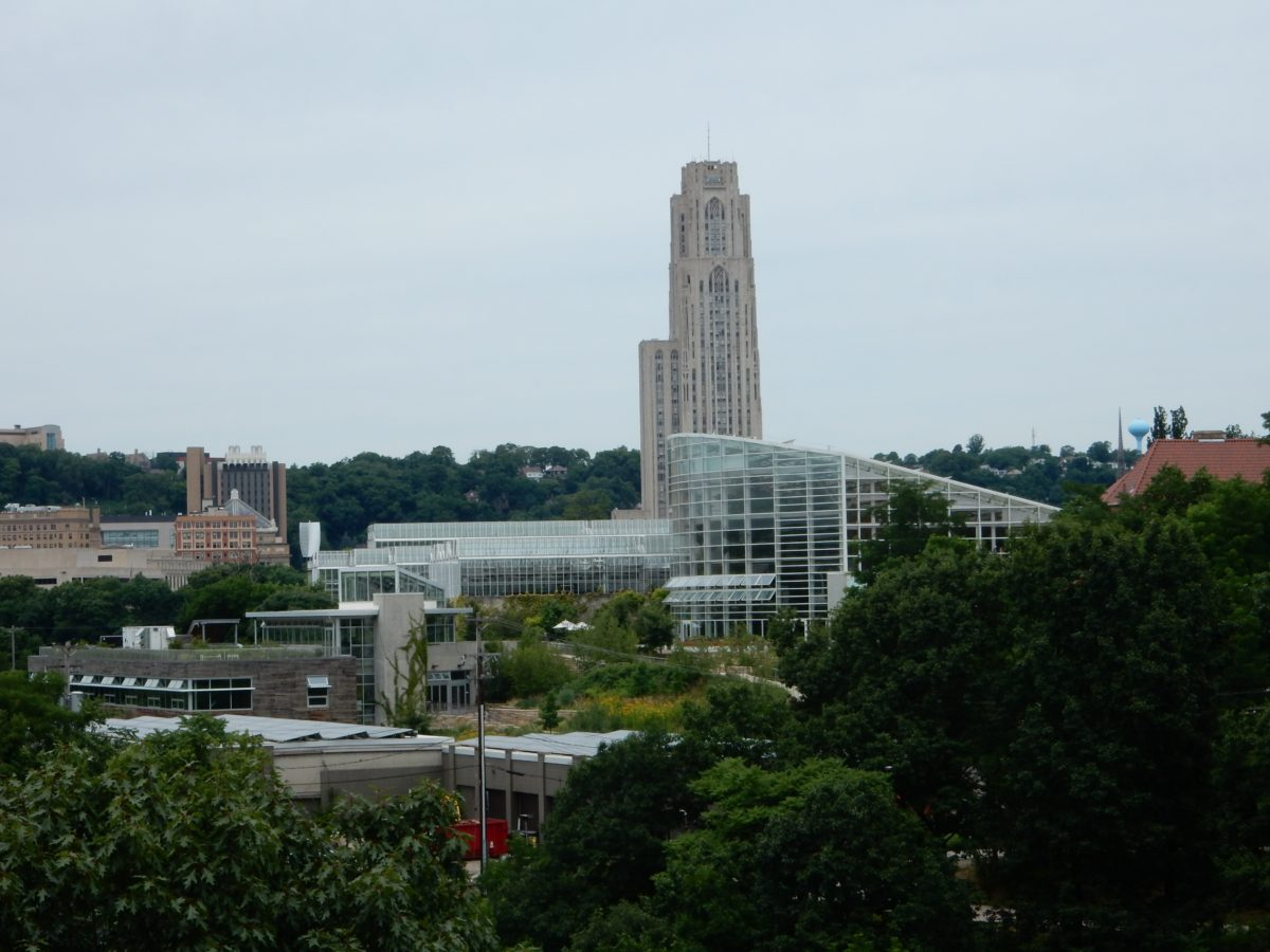 Take a hike! In Pittsburgh's Schenley Park