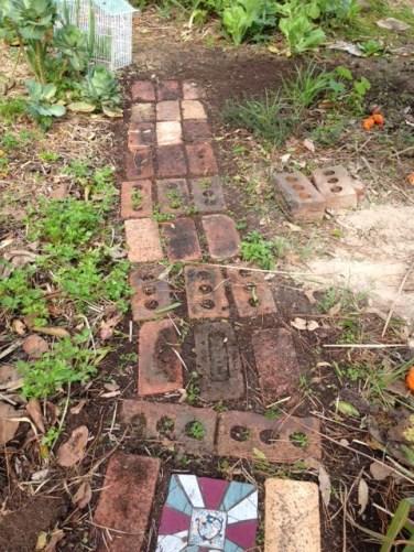 established-veg-garden-6