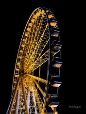 I think the wheel is orange for Halloween?