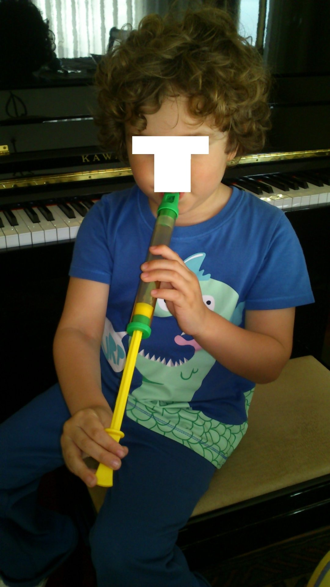 Flauta de émbolo