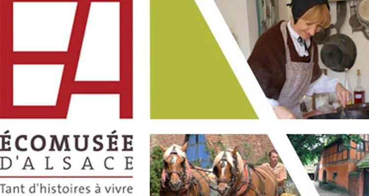 """Résultat de recherche d'images pour """"logo ecomusee alsace"""""""