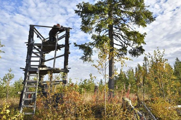 Hunting on Elevated Stands