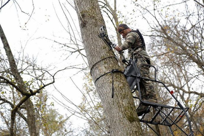 What is a Tree Stand