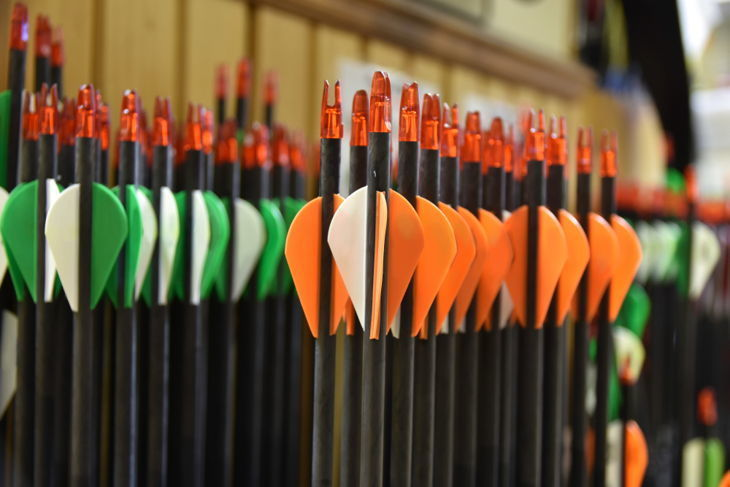 carbon hunting arrows
