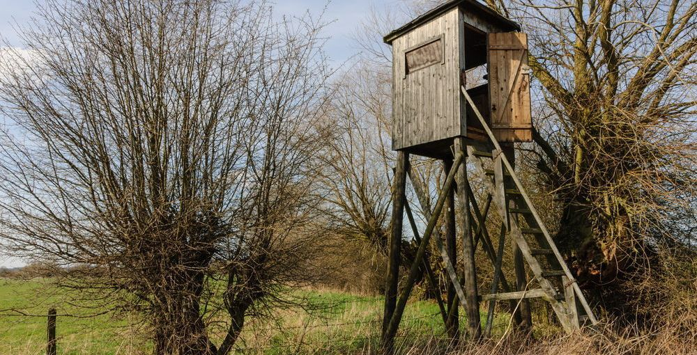 Dehumidifiers and Deer Stands – An Unlikely Alliance
