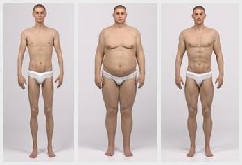 Nutrition depending on body types - muskultura.mk