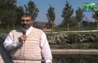 Aspekte der Freitagsansprache Imam Chamene'is