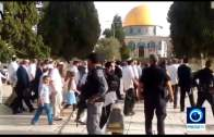 Muslim-TV Nachrichten 24.05.2018