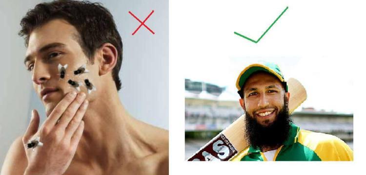 FACT: Beards keep flies away.