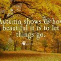 Why Autumn Inspires Me to Live My Best Life